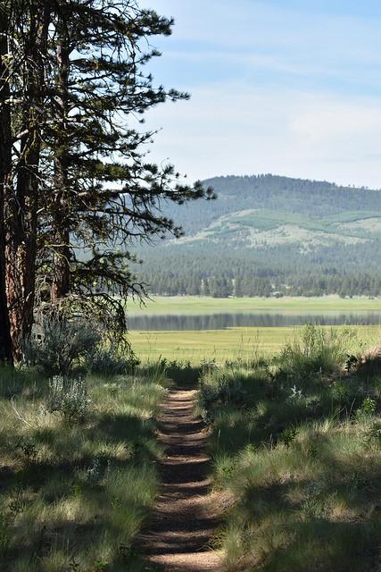 Walking, hiking, birding